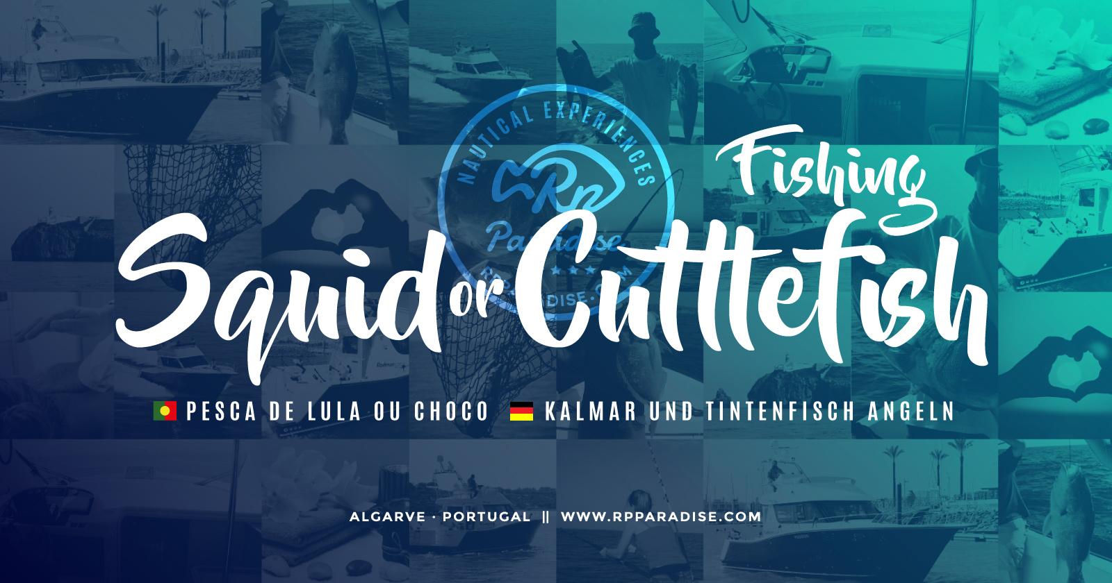 Algarve Fishing Trips Portimão, Sport Fishing at its best ...